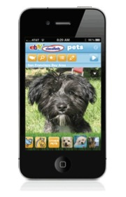 eBay Classifieds Pets App Helps Adoptable Pets Find New