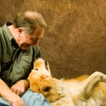 Fear Aggression In Dogs
