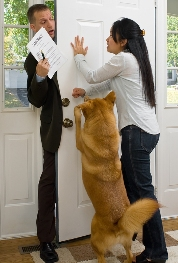 Good Dog Behavior - Front Door Manners