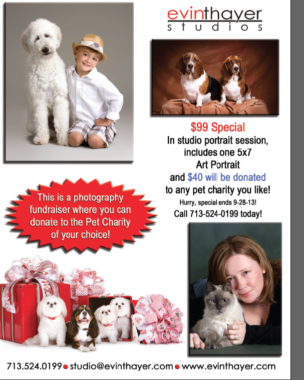 ... 99 portraits which includes a $ 40 donation to any pet charity