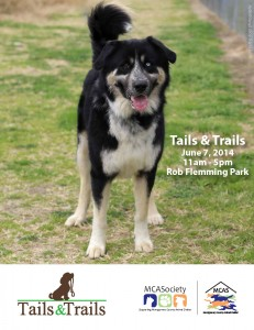 Tails and Trails Packet_Page_1