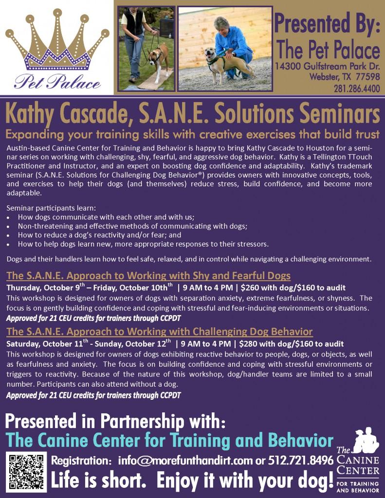 T Touch Seminar Oct 2014