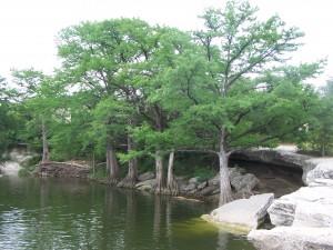 McKinney Lake