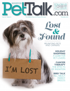 PetTalk 98 November Cover