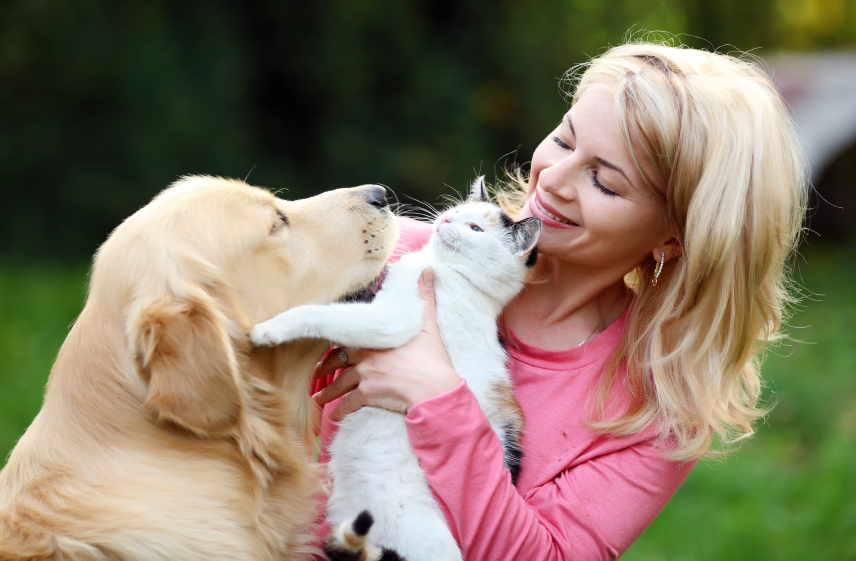 On Pets: My Rationale Explained