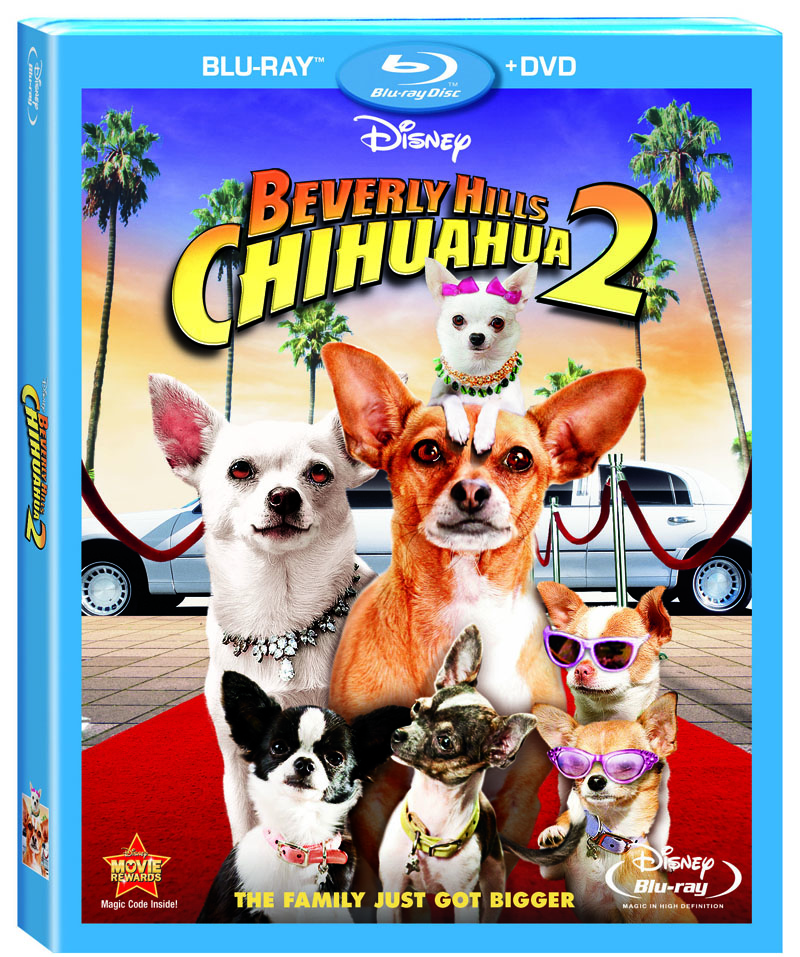 Beverly Hills Chihuahua 2 Contest: 5 DVD Combo Packs To Give Away!