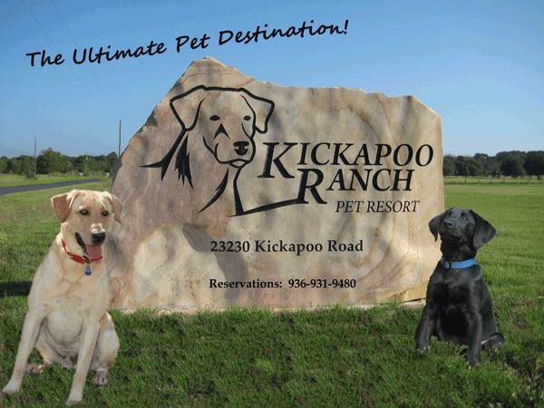 Kickapoo Ranch Pet Resort Now Open