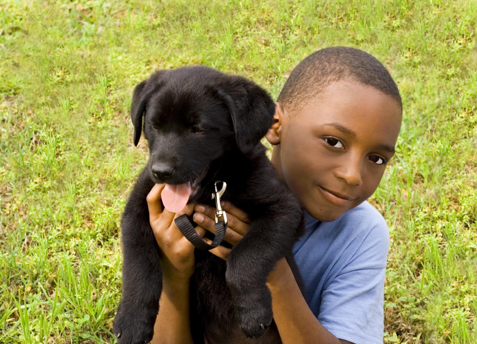 Pup-A-Palooza at Houston's Meadowlake Pet Resort