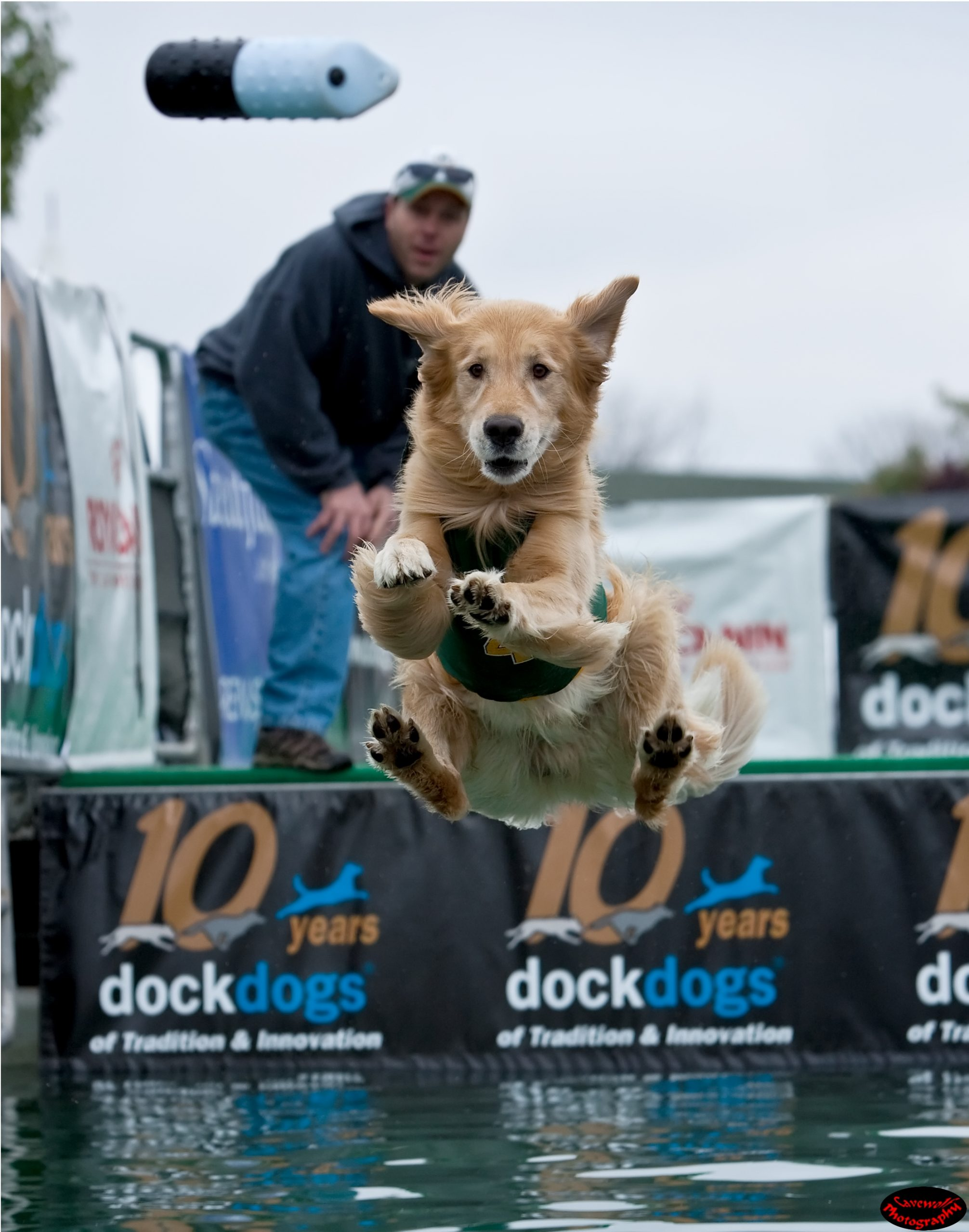 Dock Dog Jumping Classes At Rummy's Beach Club