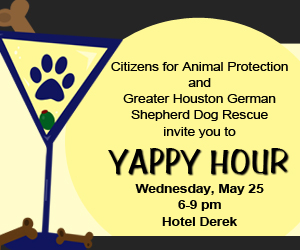 CAP Yappy Hour May 25 Benefits GHGSDR