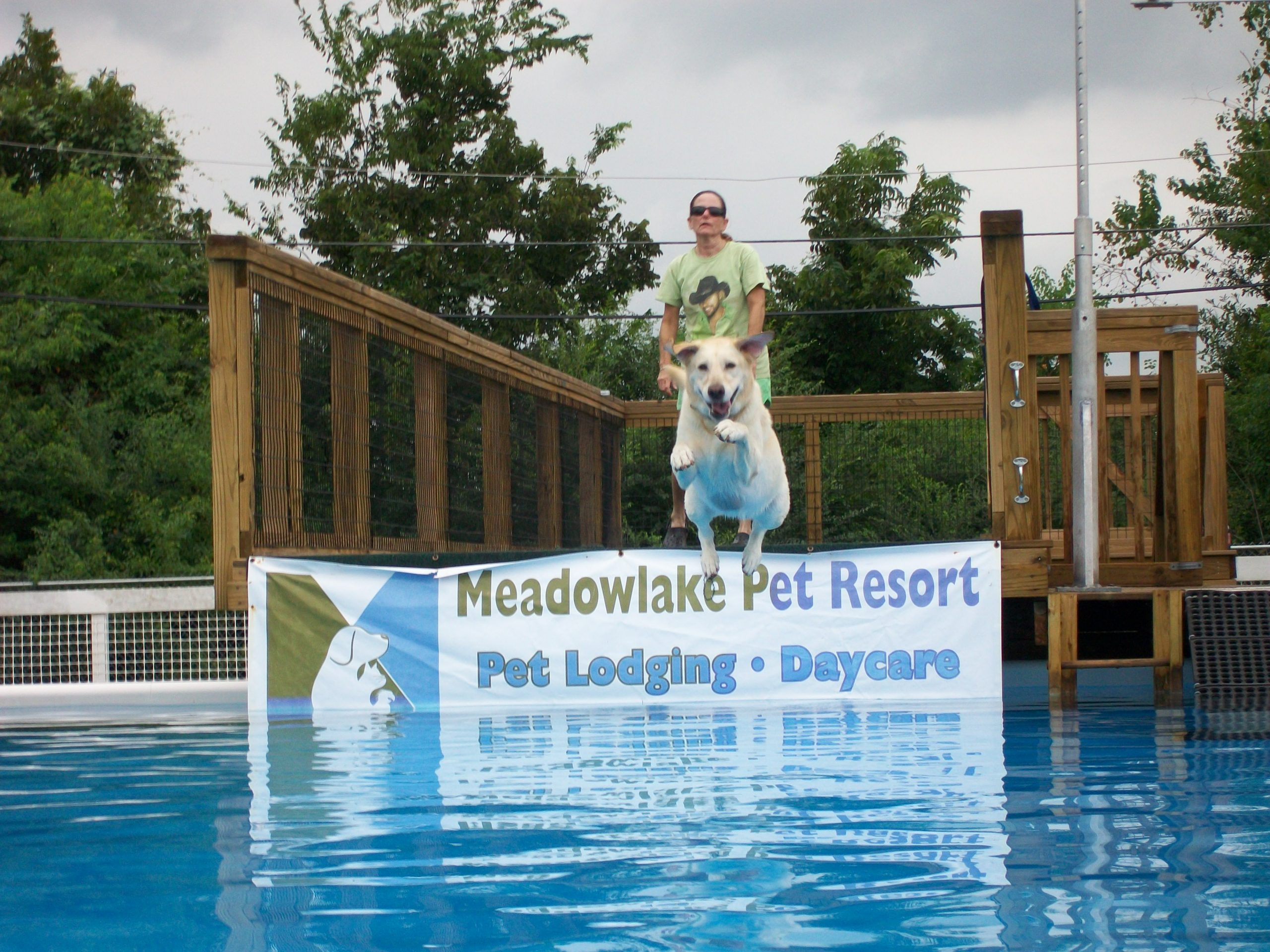 Meadowlake Pet Resort Offers Dock Dogs Training