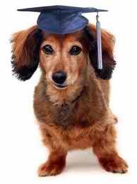 Pet Palace Announces Training Opportunities