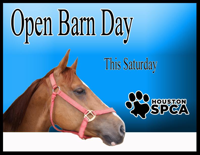 Houston SPCA Open Barn Day Aug. 27