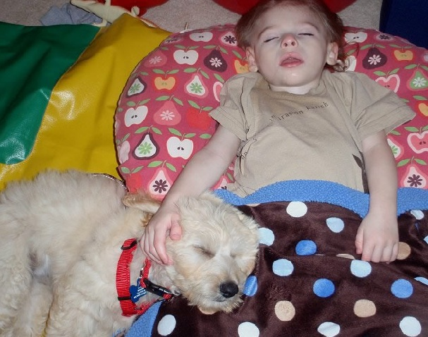 "My Service Dog ""Adam"" Changes Houston Boy's Life"