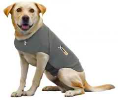 Thundershirts Now Available At The Pet Palace