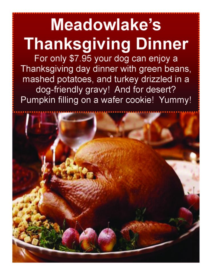 Last Chance for Thanksgiving Feast At Meadowlake!