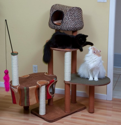 "Kitty""scape"" Play Structure"
