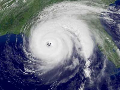 Houston SPCA Hurricane Preparedness Tips