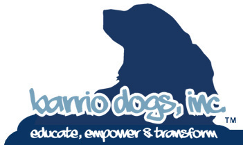 Barrio Dogs Community Awareness and Fundraiser