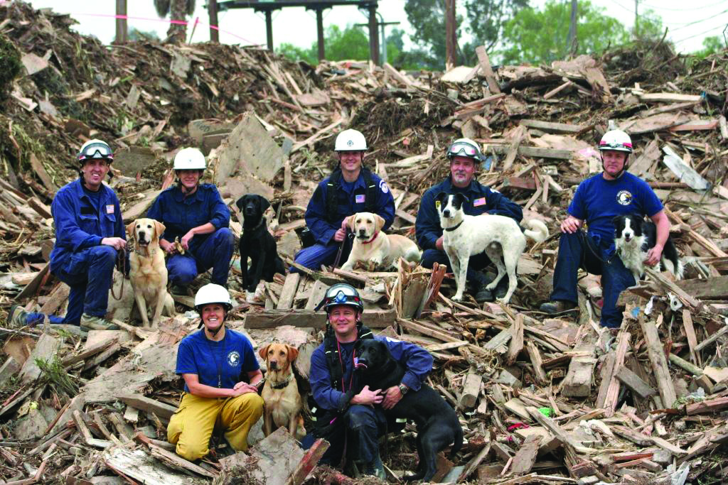 A 9/11 Salute To The National Search Dog Foundation