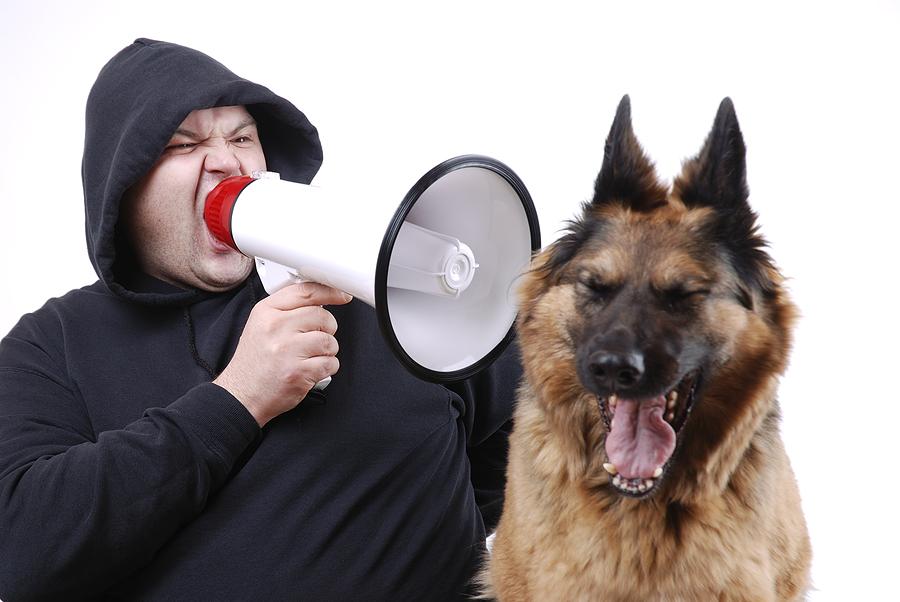 Dog Behavior Problems: My Dog Will Not Listen