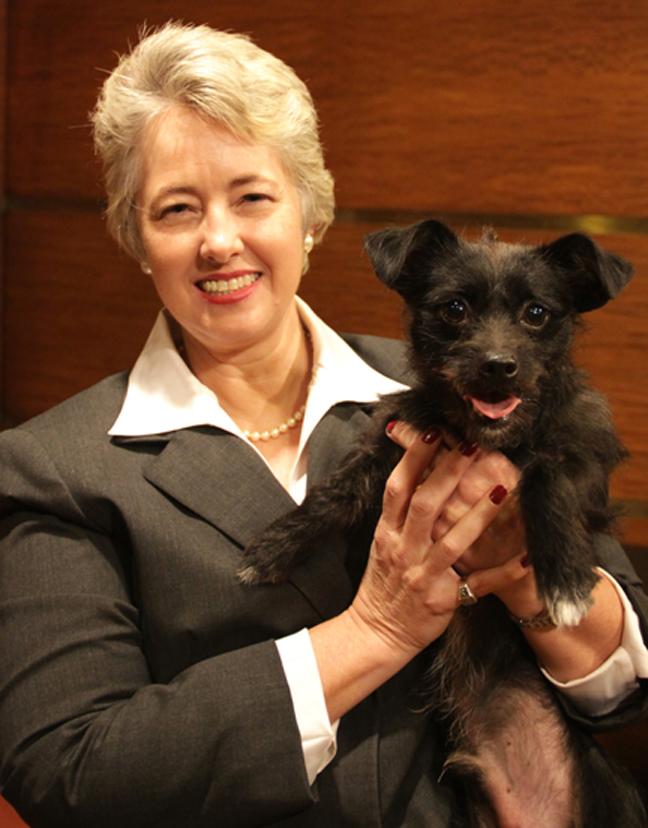 BARC Houston: Contest & Mayor's Pet of the Week