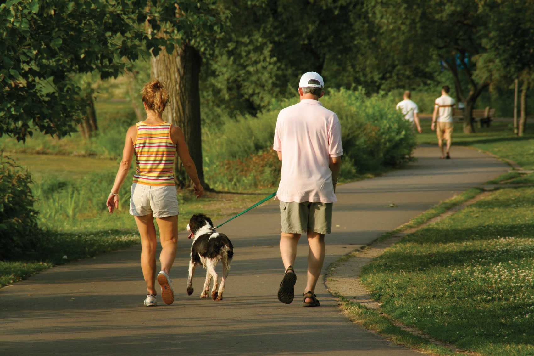 MS Houston Walk Nov 2 For Pooches Too