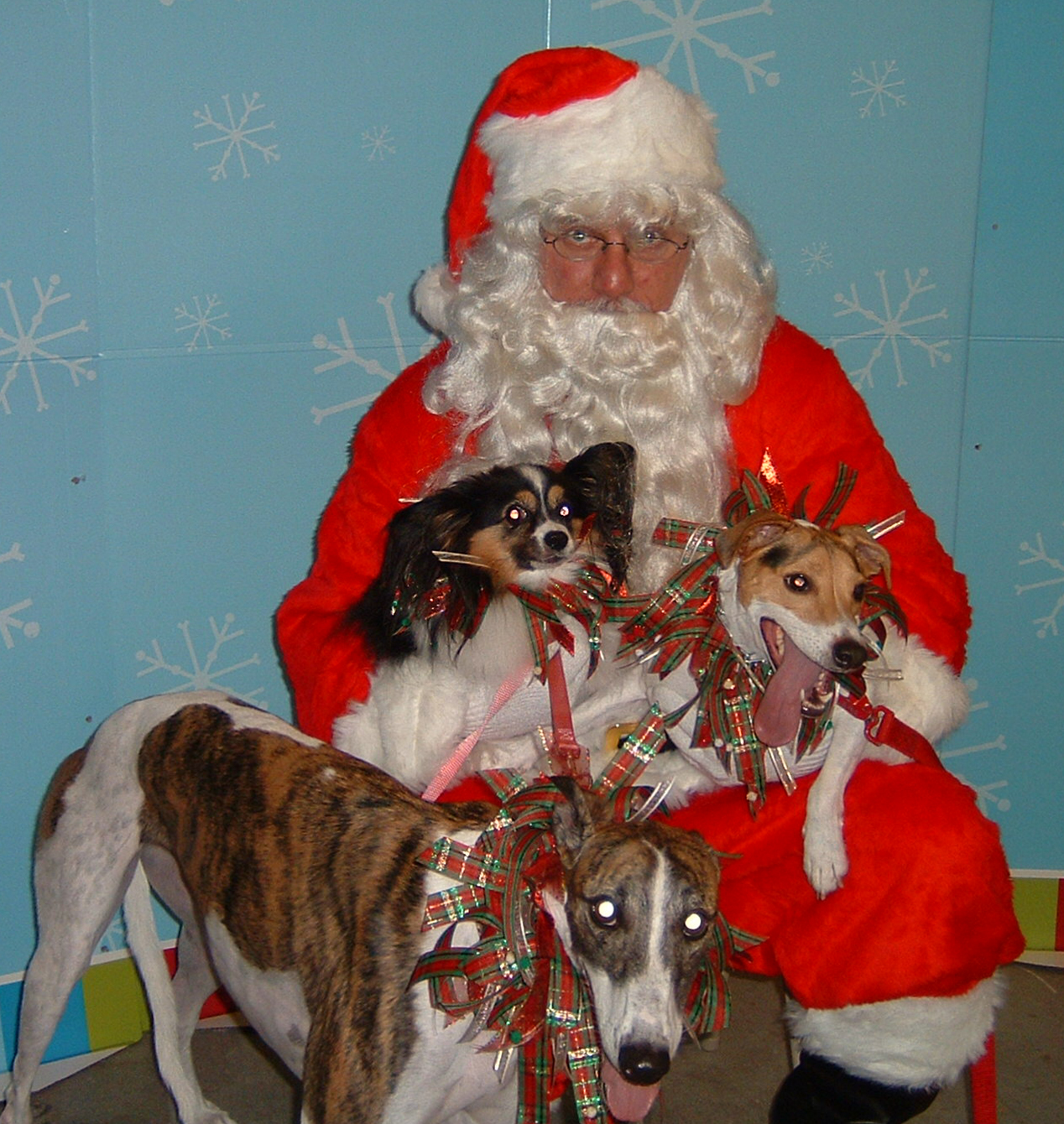 Photos With Santa at BARC