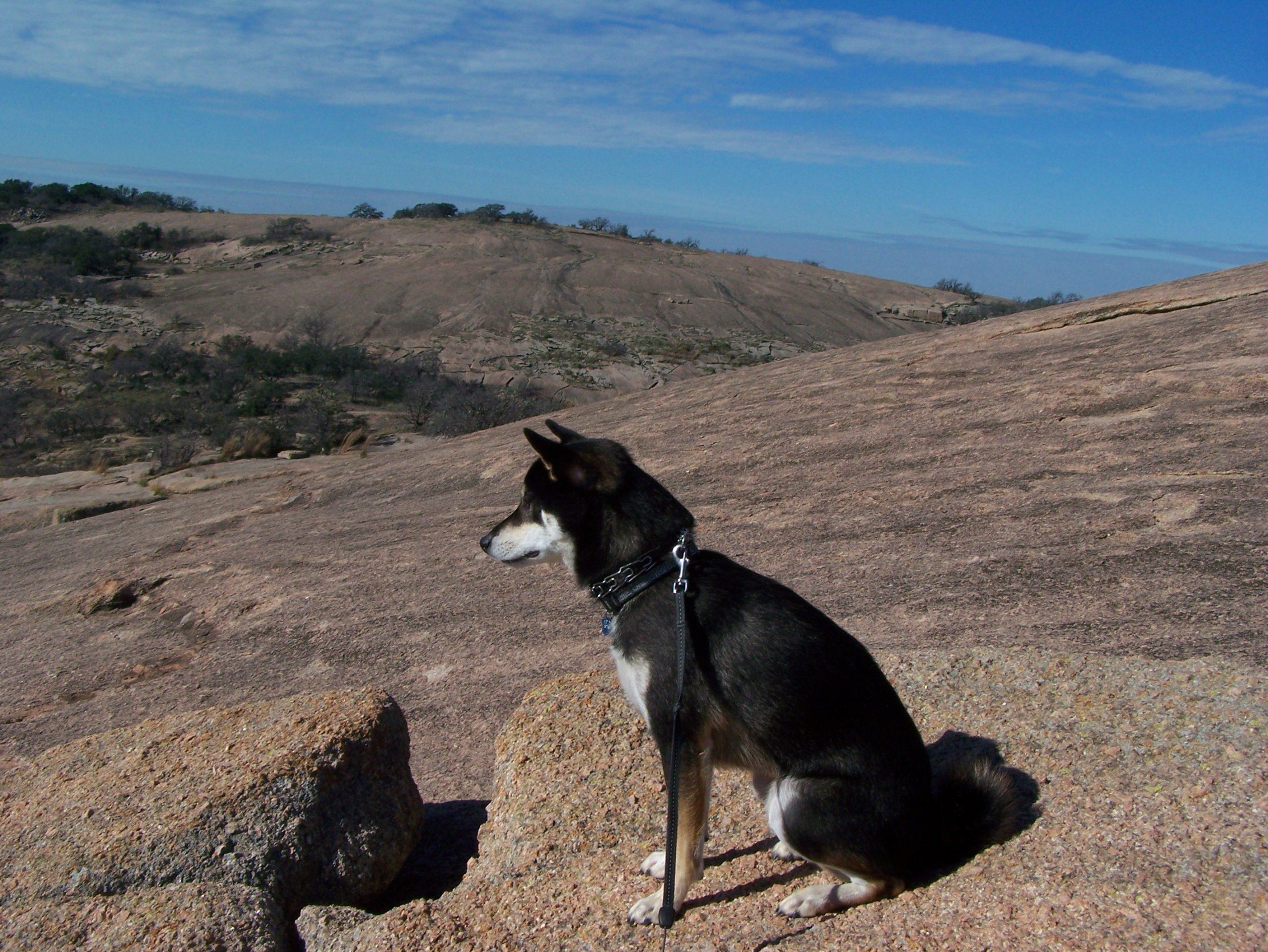 KUMA'S KORNER: Hill Country Travels