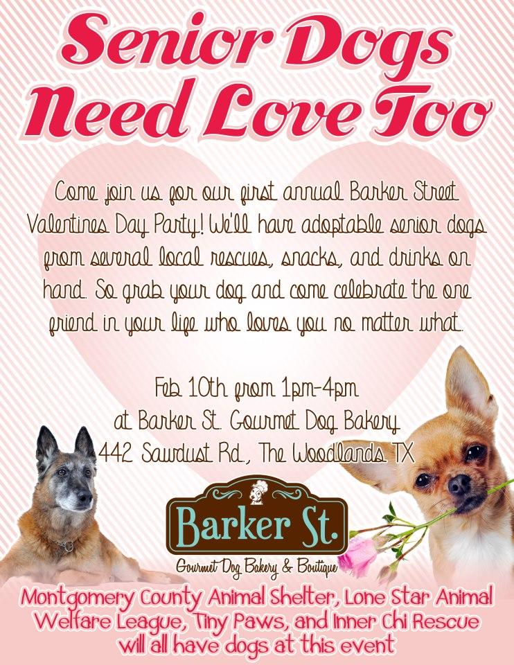 Barker Street Bakery Valentine Party