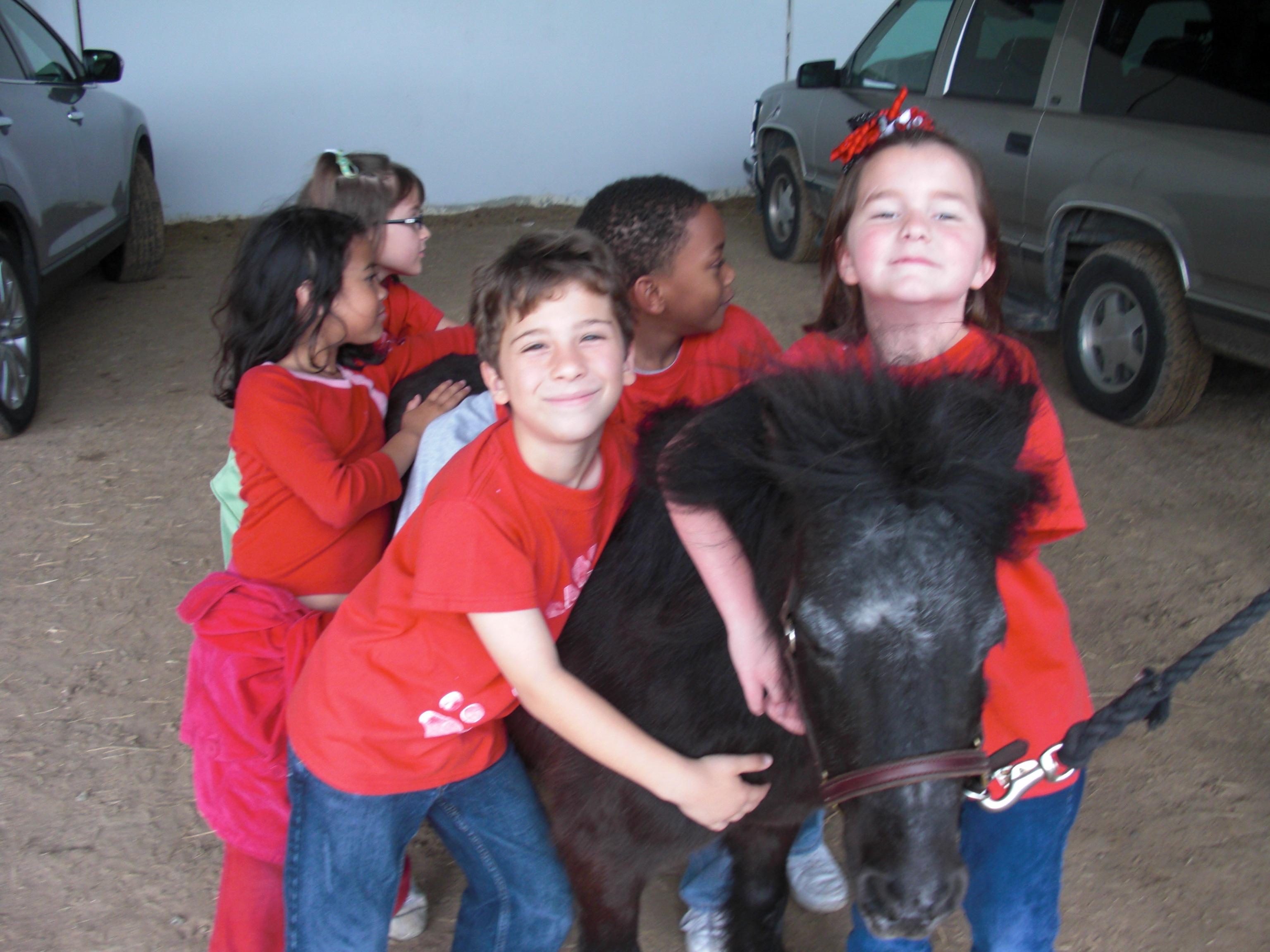Personal Ponies
