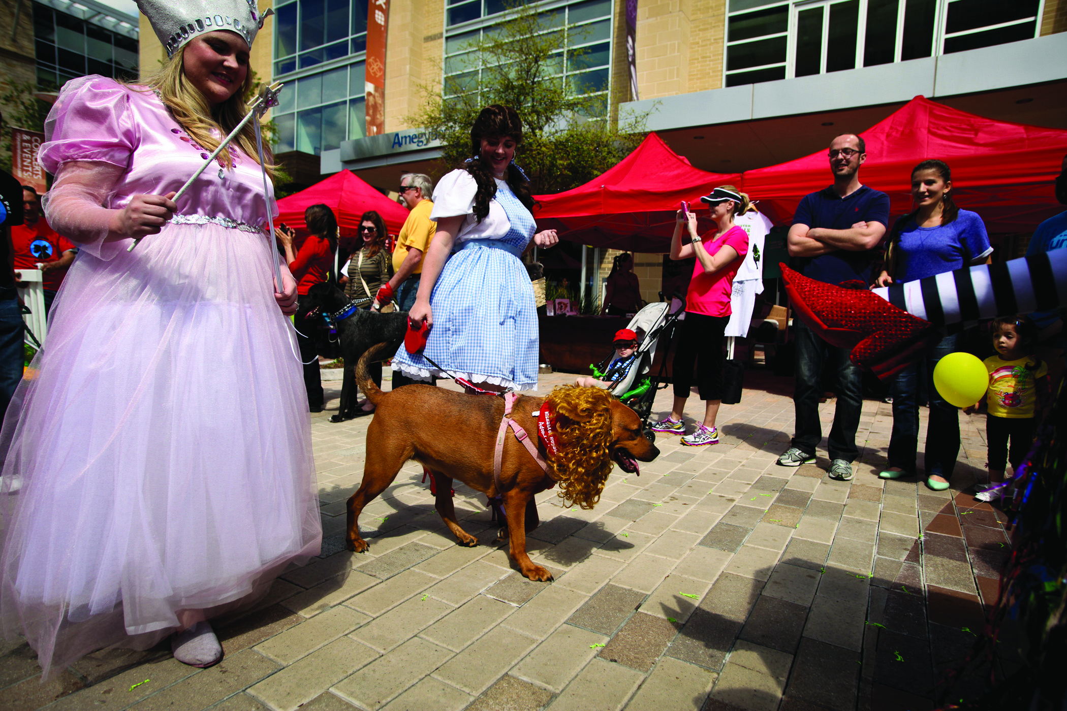 PetTalk's Doggy Party on the Plaza 2013 Photo Gallery