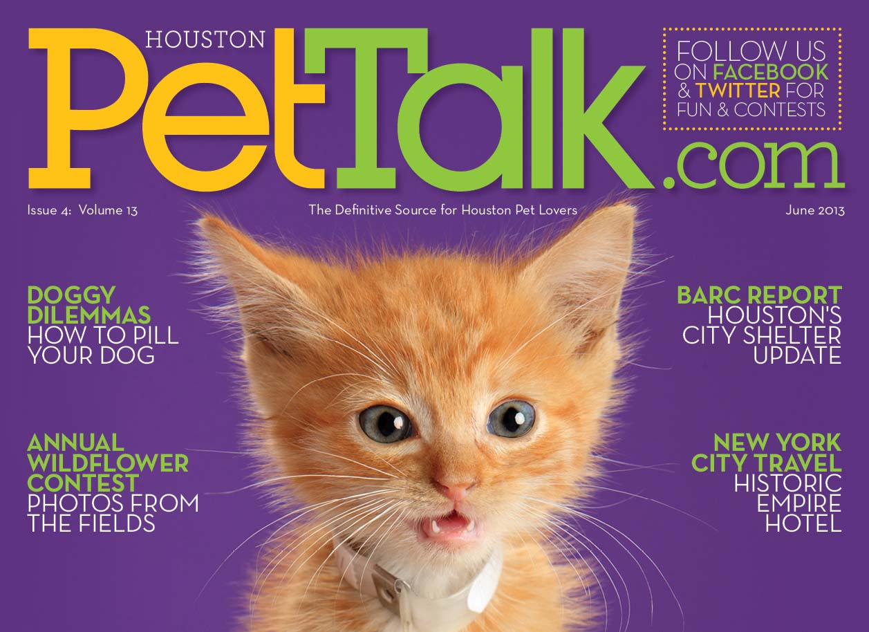 June 2013 Digital Issue of Houston PetTalk