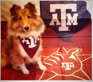 HOWDY! My name is Penny and I am a General Studies major from Houston, Texas, but more importantly I am the proudest member of the Fightin' Texas Aggie Class of 2012. Whoop!!! Gig' Em Aggies!!!