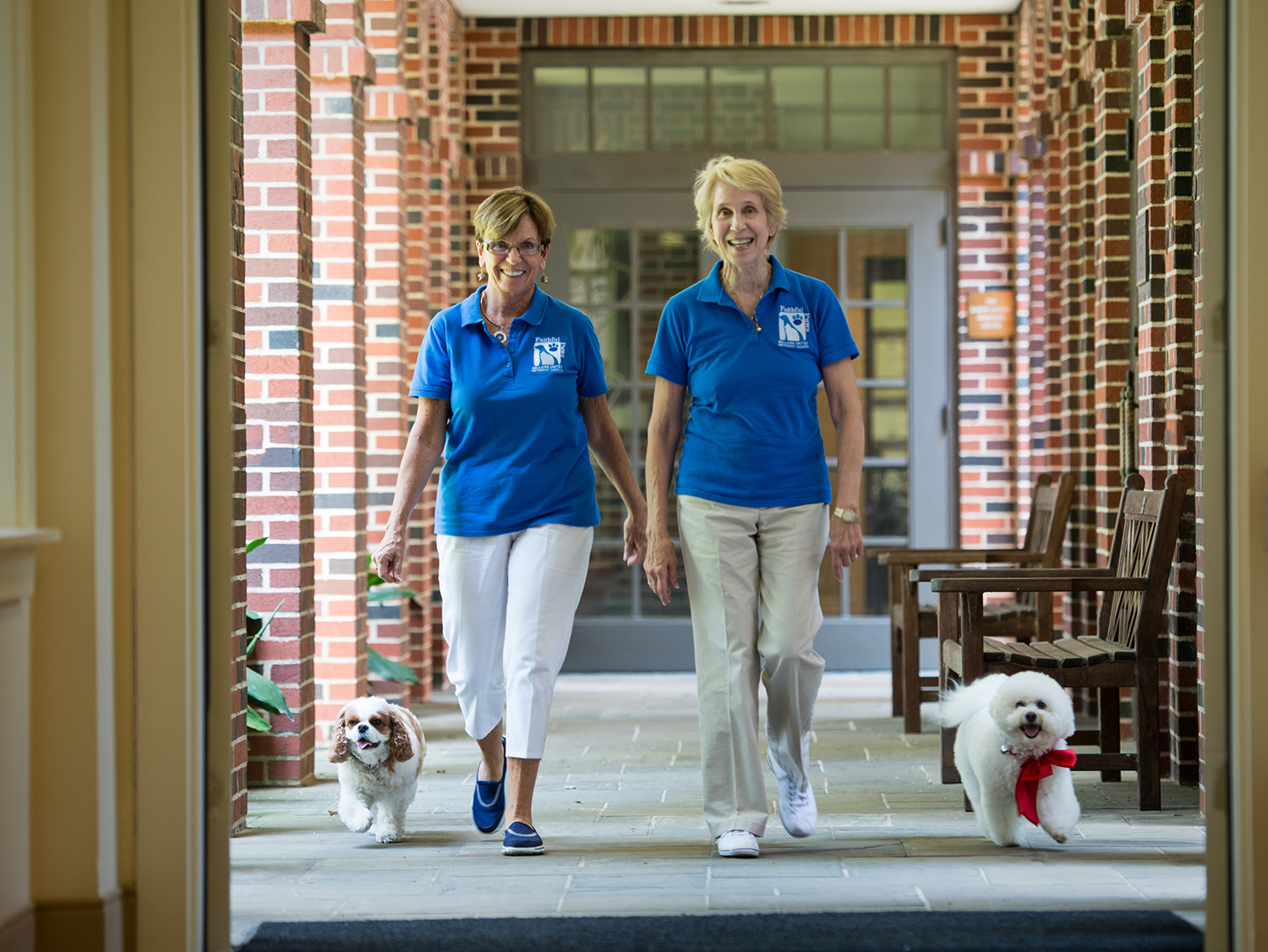 The Therapy Dogs of Houston Hospice