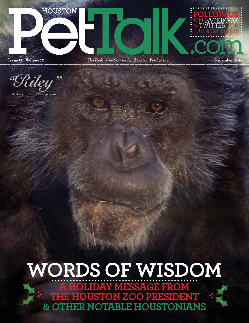 December 2010 Issue of Houston PetTalk