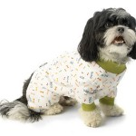 Pajamas for Pets $15 at Rocky and Maggies