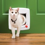 Let Your Outdoor Cat In $33 at Petco