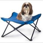 Raised Dog Bed $35 at Arnes Pet Supplies