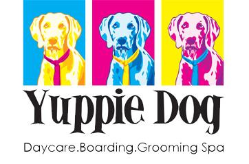 Yuppie Dog Daycare