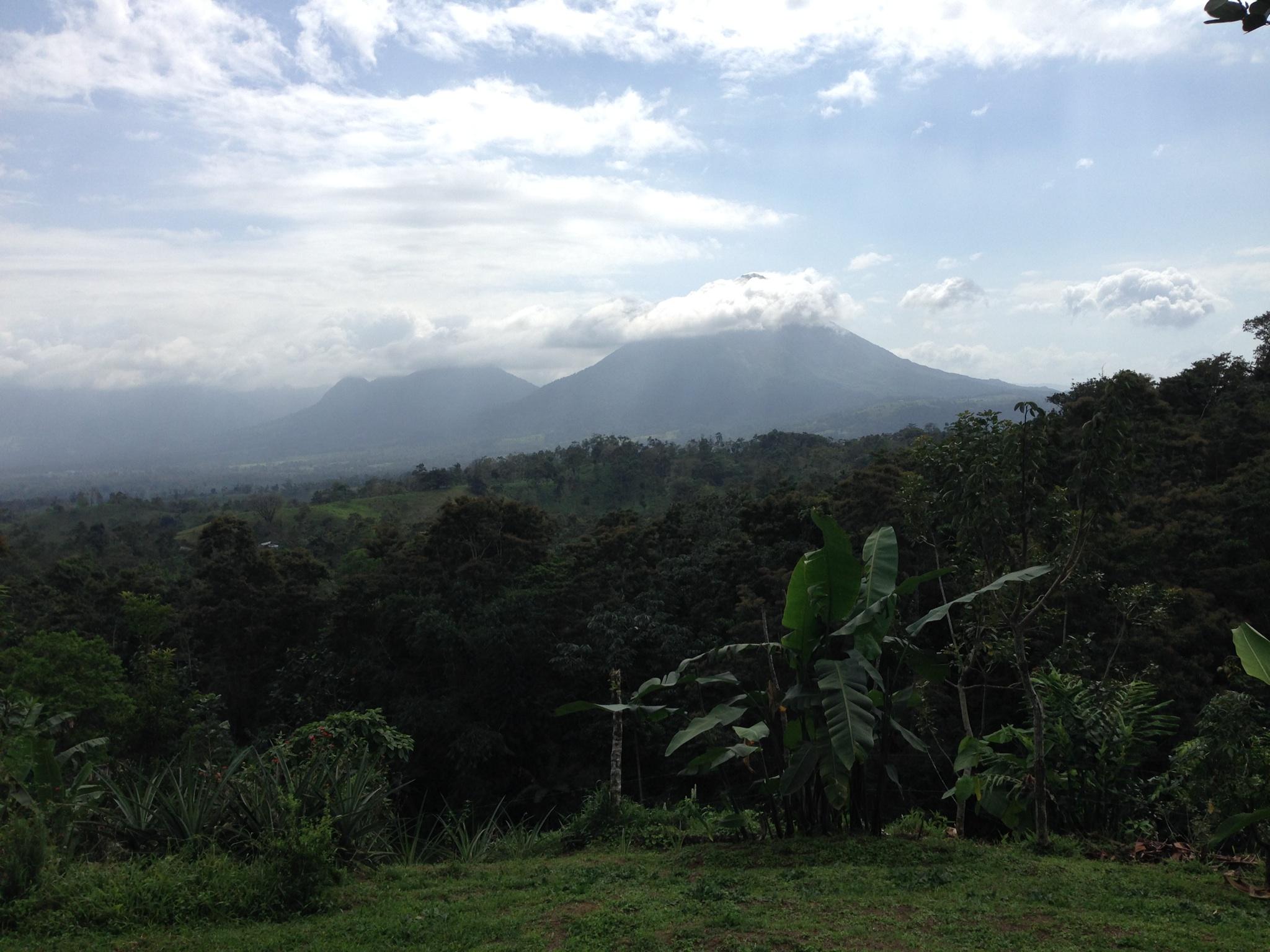 Day 1: Costa Rican Equine Adventure