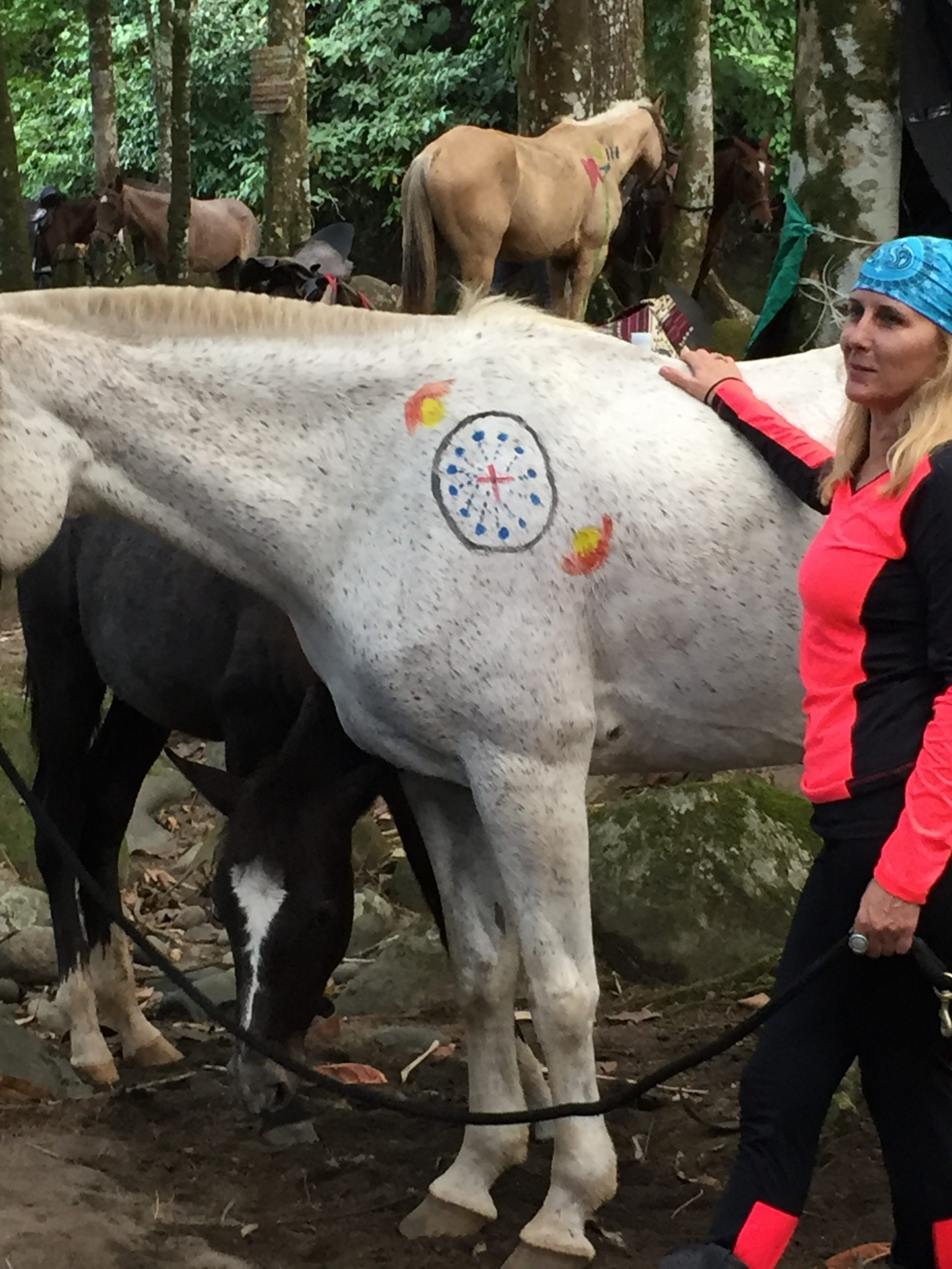 Day 8: Costa Rican Equine Adventure