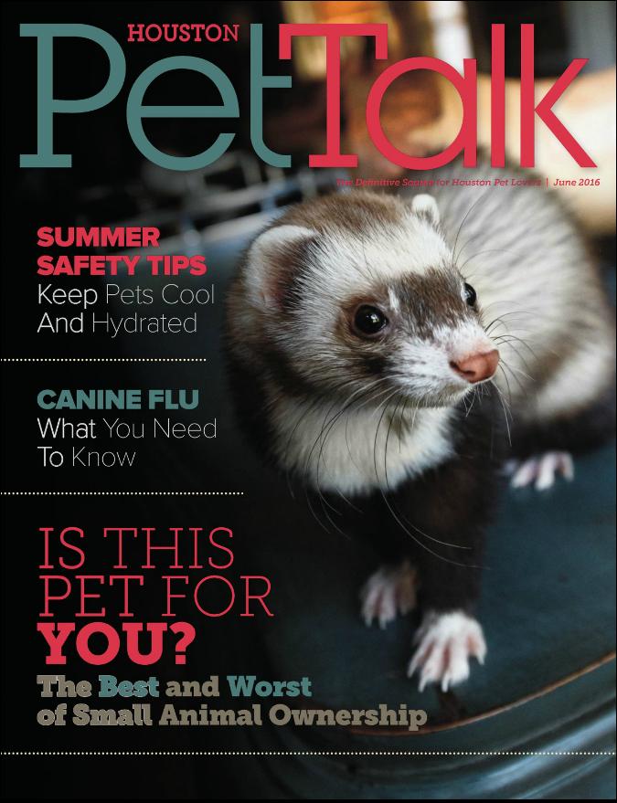 June 2016 Digital Issue of Houston PetTalk