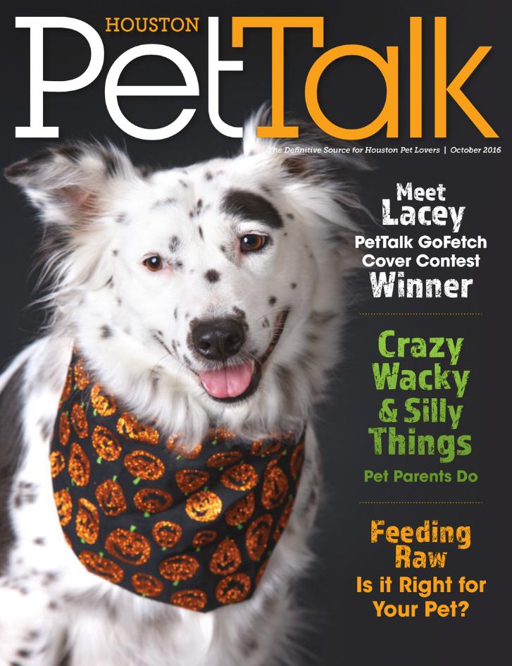 October 2016 Digital Issue of Houston PetTalk