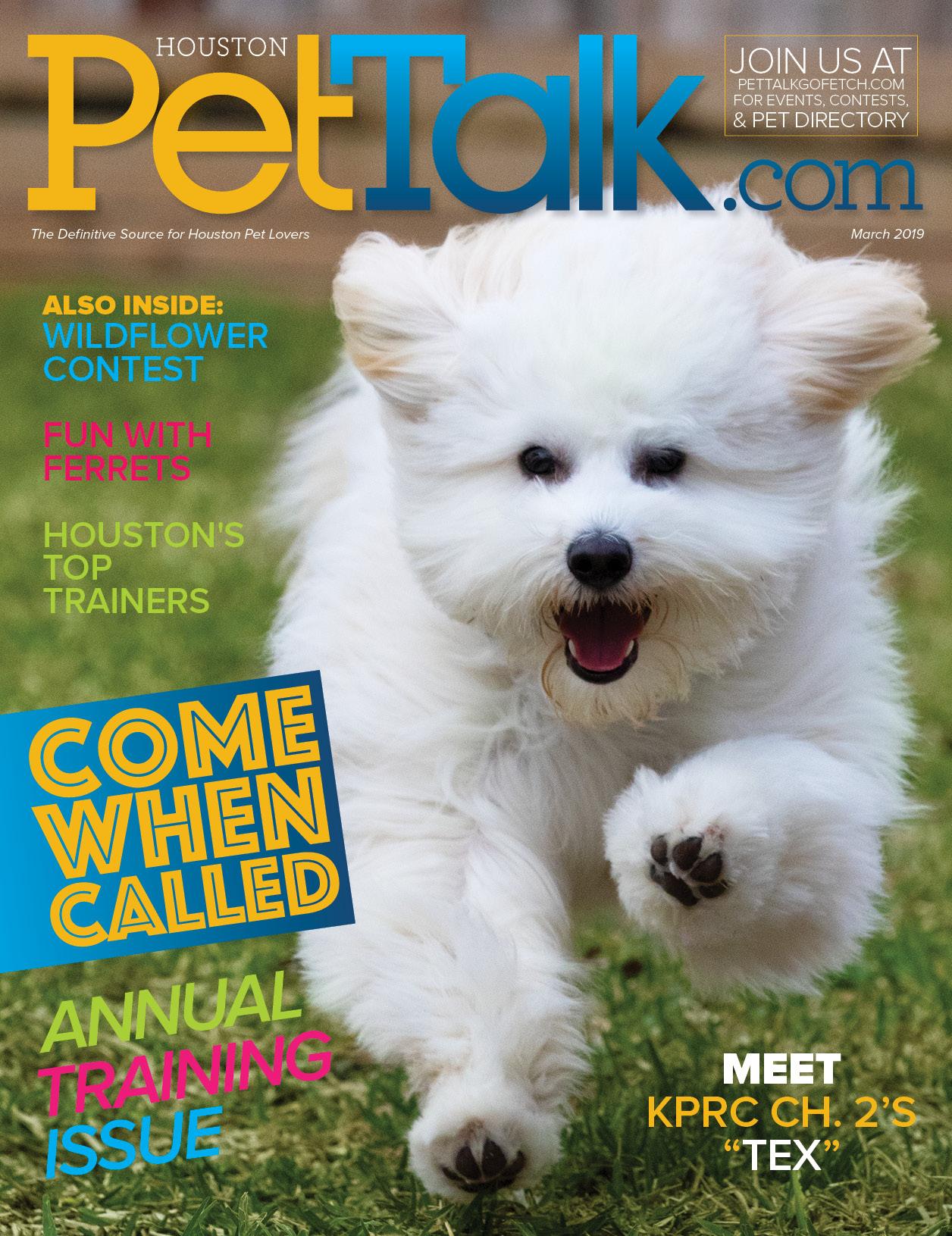 March 2019 Digital Issue of Houston PetTalk