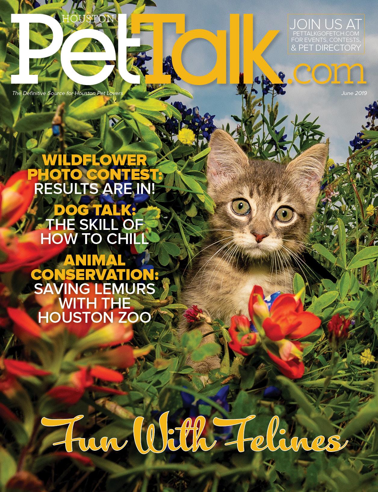 June 2019 Digital Issue of Houston PetTalk