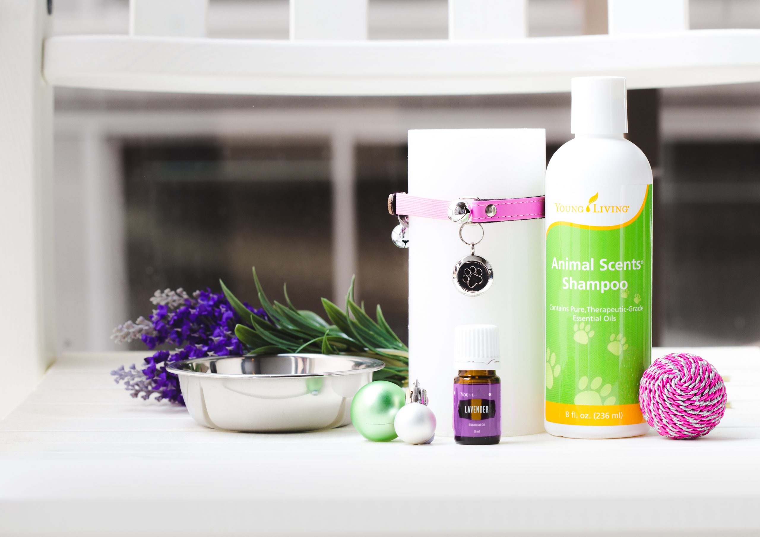 Essential Oils For Animals: Learn The Basics