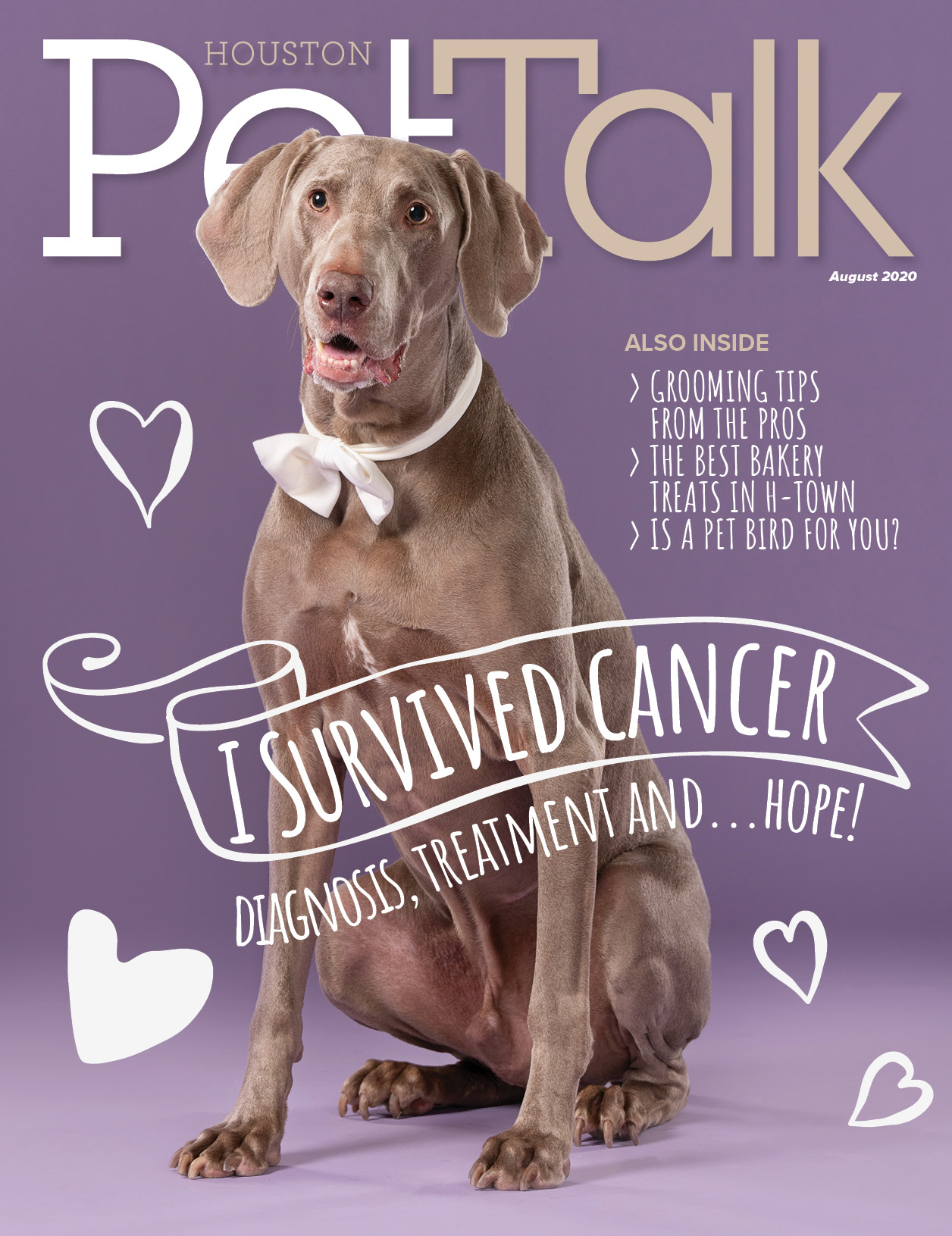 August 2020 Digital Issue of Houston PetTalk