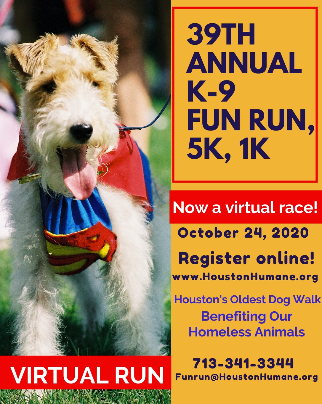 HHS Fun Run And Walk Goes Virtual In October