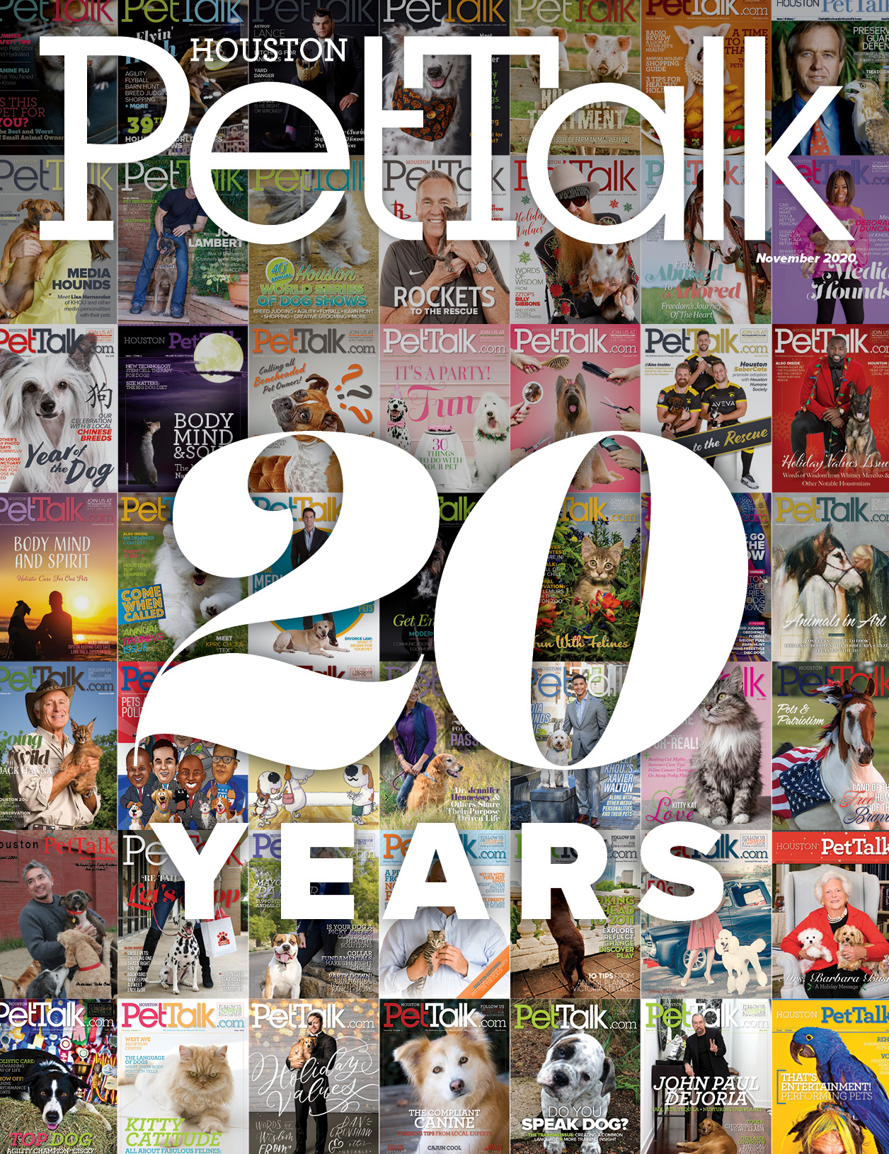 November 2020 Digital Issue of Houston PetTalk